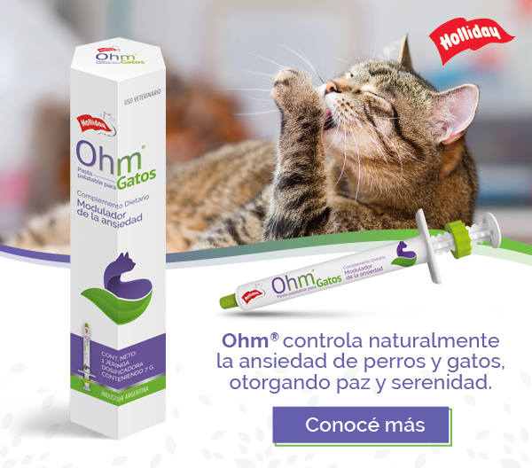 Holliday – Ohm – A360vet Lat